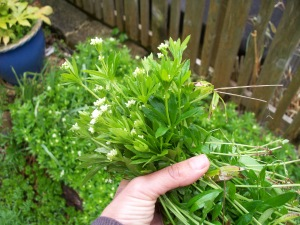 handful of sweet woodruff