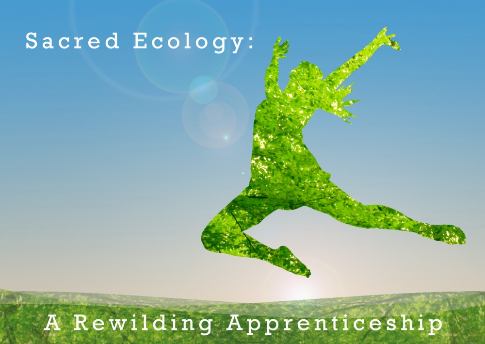 Sacred Ecology: A Rewilding Apprenticeship